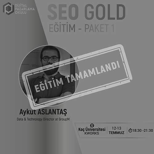 SEO Gold Paket 1
